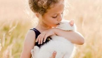 Παιδί και κατοικίδια: Μια υπέροχη σχέση ζωής!